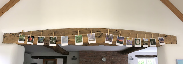 heritage cards, photographic display, hanging cards