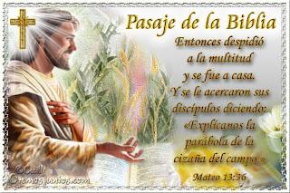 Resultado de imagen para Mateo 13,36-43