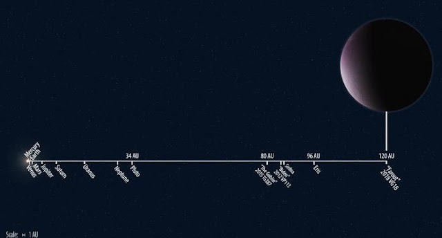 "Solar System distances to scale showing the newly discovered 2018 VG18, nicknamed ""Farout,"" compared to other known Solar System objects. Illustration by Roberto Molar Candanosa and Scott S. Sheppard is courtesy of the Carnegie Institution for Science."
