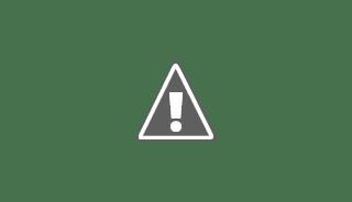 Batang pisang,unik,bercabang dua