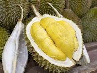 gambar buah durian, duren