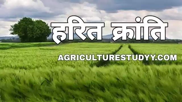 हरित क्रांति क्या है अर्थ एवं परिभाषा, green revolution in hindi, harit kranti ka arth bataiye, हरित क्रांति के प्रभाव, उद्देश्य व समस्याएं बताएं,