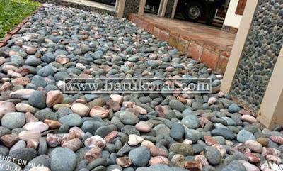 batu koral untuk taman