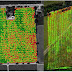 Advantages of LiDAR Usage for Agriculture
