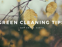 Consider These Green Cleaning Tips for Green Living
