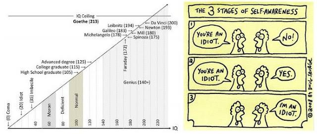 IQ идиота, имбецила, дегенерата