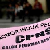 Tahun 2015 ini dipastikan tidak ada tes CPNS