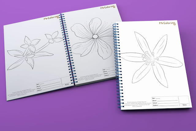 printable flower template outline coloriage Blank coloring pages books for girls  pdf pictures to print out for kids to color fun colouring page preschool
