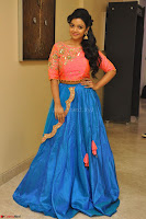 Nithya Shetty in Orange Choli at Kalamandir Foundation 7th anniversary Celebrations ~  Actress Galleries 051.JPG