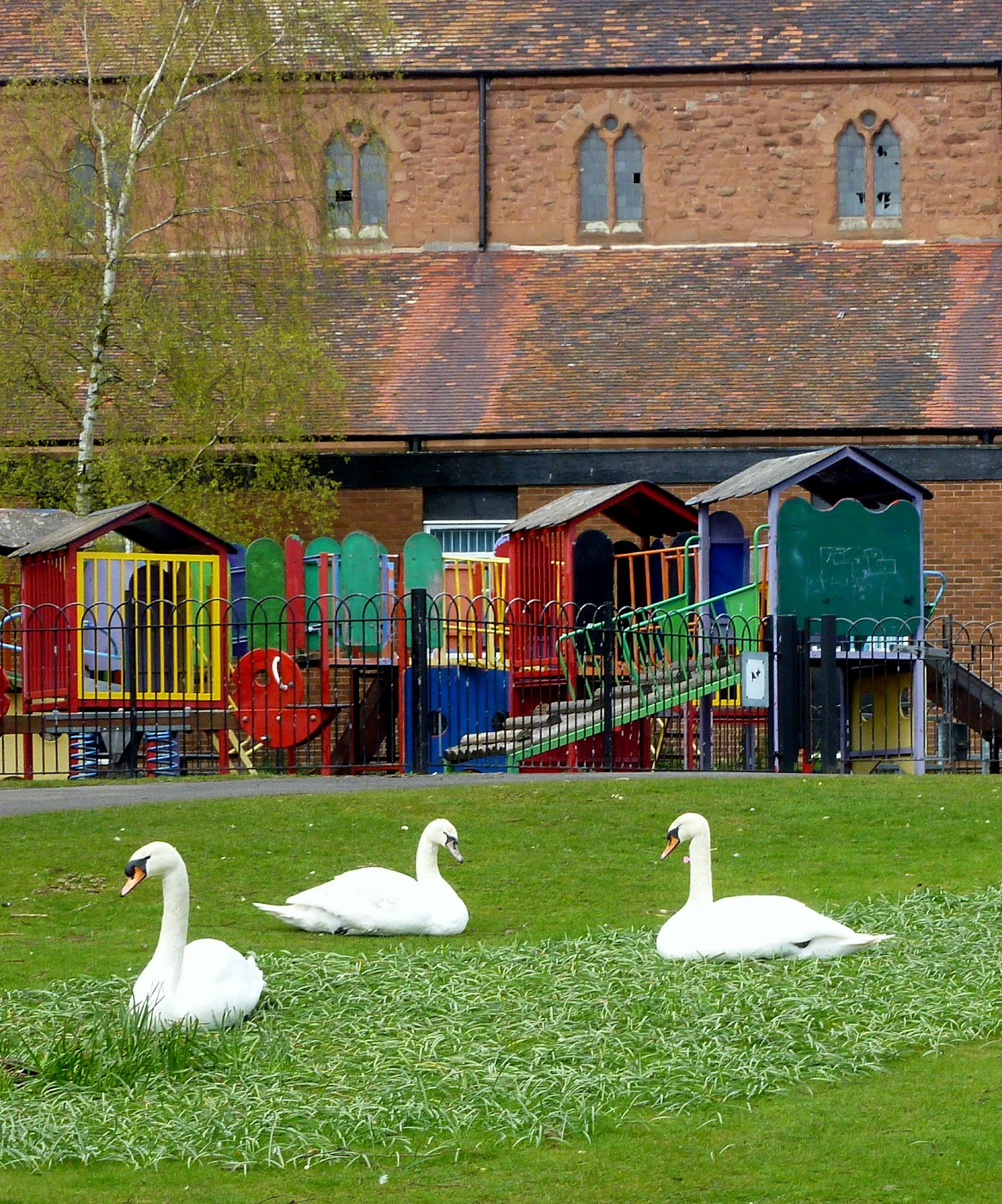 Places To Visit Coventry Uk: Today Around Coventry: Just Swanning Around In Coventry