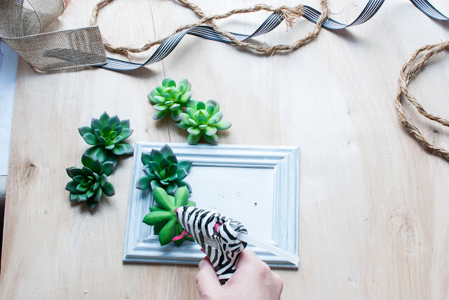 How to Make Framed Succulents With Dollar Store Supplies