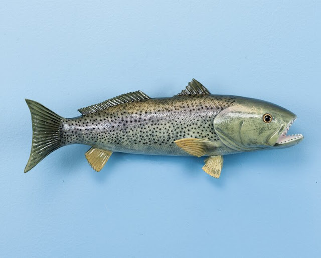 Weak Fish Wall Decor