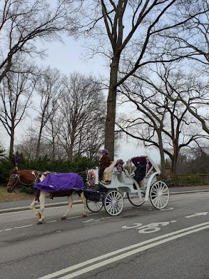 Passeio de carruagem no Central Park