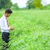 [News]Banco do agronegócio inova em formação de Consultores de Negócios por plataforma online