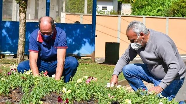 Secretária de Meio Ambiente de Colombo inicia plantio de flores de inverno na cidade