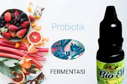 Probiotik Makanan dan Minuman Baik Bagi Kesehatan