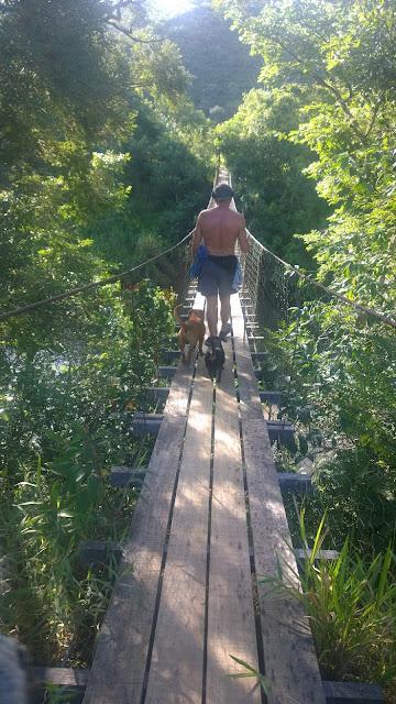 Ponte pensil sobre o Rio São Francisco - Vargem Bonita-MG