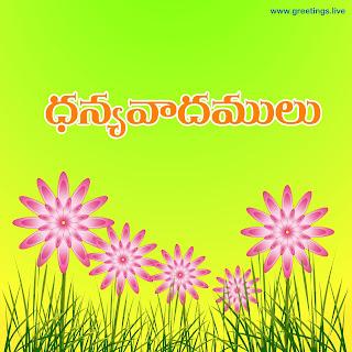 Thank you in Telugu script