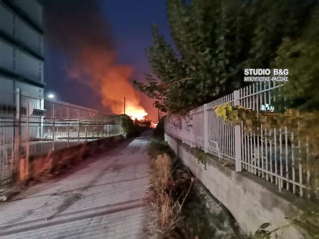 Μεγάλη κινητοποίηση της πυροσβεστική για φωτιά στη Νέα Κίο Αργολίδας (βίντεο)