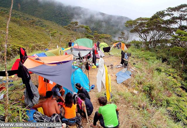 Mt. Halcon news