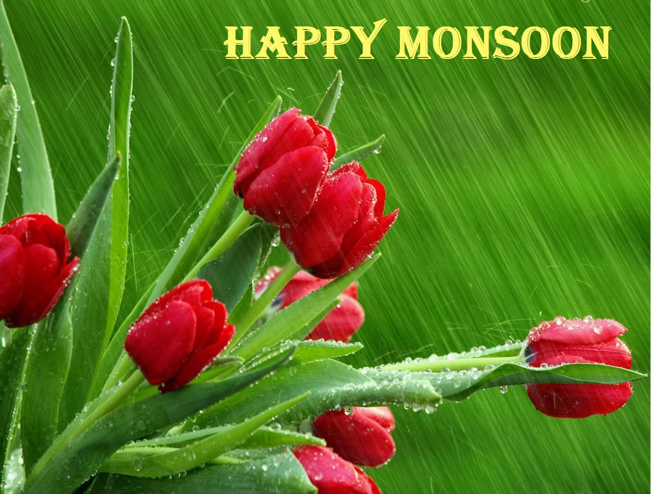 Khushi For Life Enjoy Love Of Nature Happy Monsoon Wallpaper