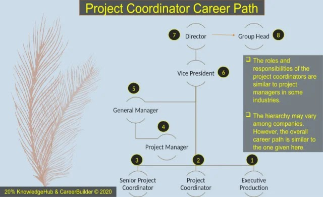 The roles and responsibilities of the project coordinators are similar to project managers in some industries. The hierarchy may vary among companies. However, the overall career path is similar to the one given here.