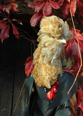 Chamois Polish crested hen in vampire costume