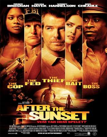 After the Sunset 2004 Hindi Dual Audio BRRip Full Movie Download
