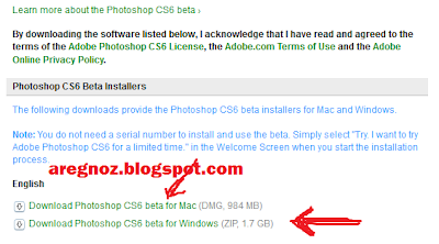 Download Adobe Photosop CS 6