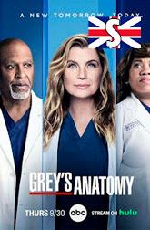 Greys Anatomy Temporada 18 subtitulos en ingles