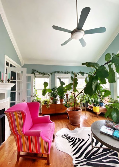 Sunroom with plants