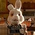 ΣΩΣΤΕ τον Ραλφ! Μια ταινία για τα πειραματόζωα