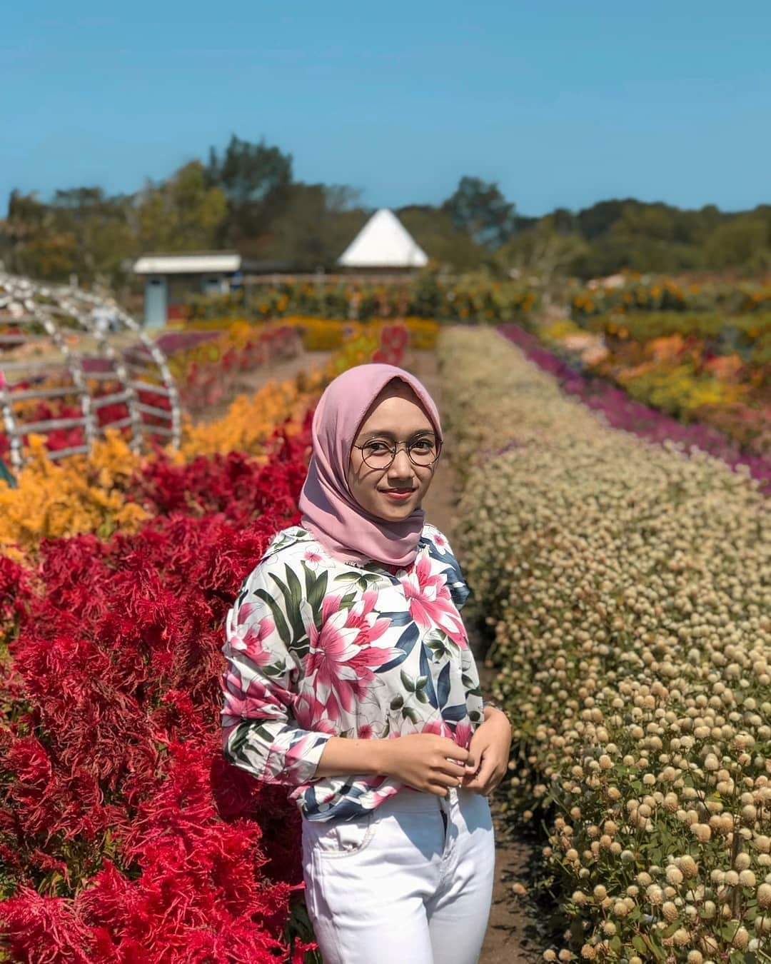HTM Taman Bunga Romatic Garden Bantul