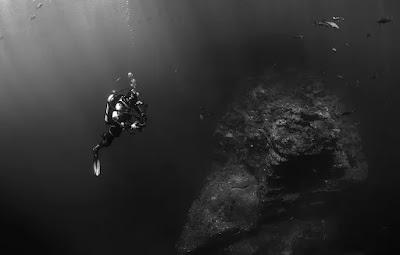 fakta tentang lautan