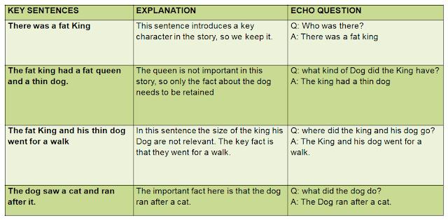 Echo Questions