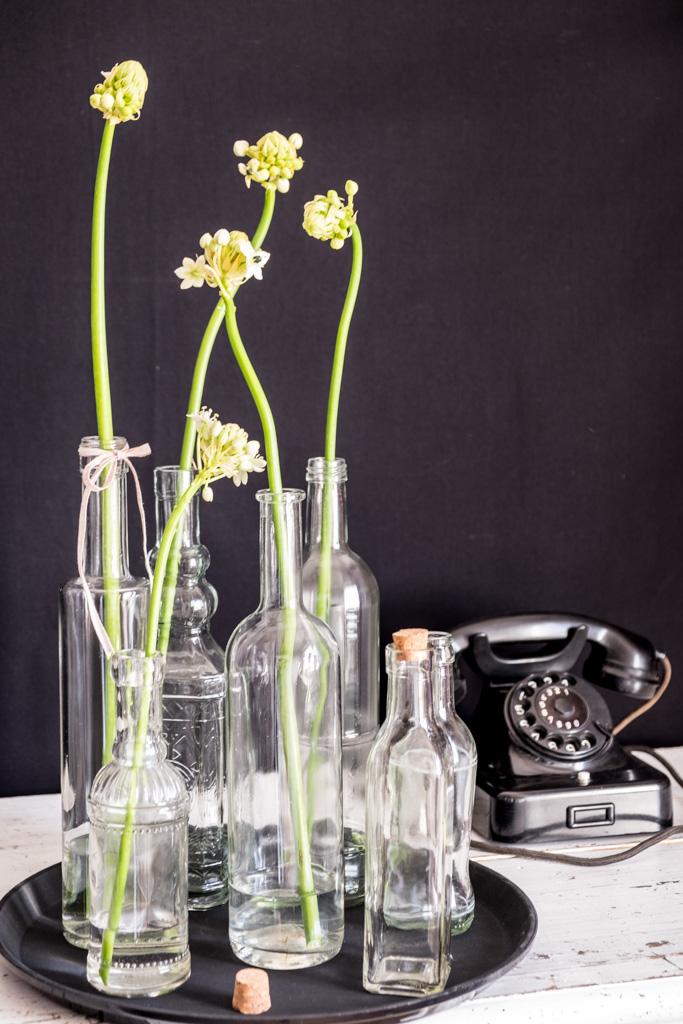 www.fim.works | Lifestyle Blog | weißer Milchstern, Gärtnerschreck in Weiß, Flaschensammlung, Sammlung von Glasflaschen, alte Glasflaschen