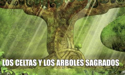 LOS CELTAS Y LOS ARBOLES SAGRADOS