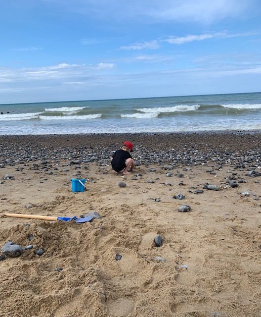 Boy collecting stones on the beach