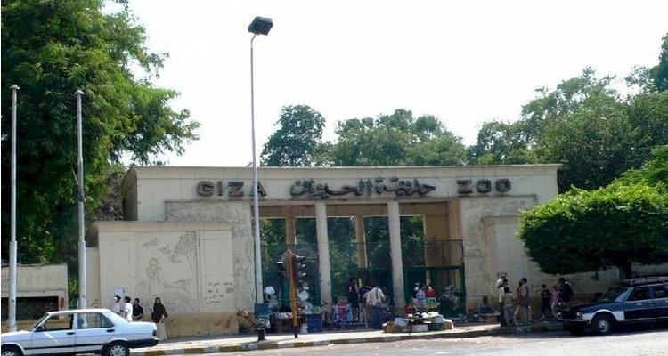 حادث حديقة الحيوان يصيب المصريين بالحزن الشديد