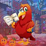 G4K Erudite Red Parrot Escape