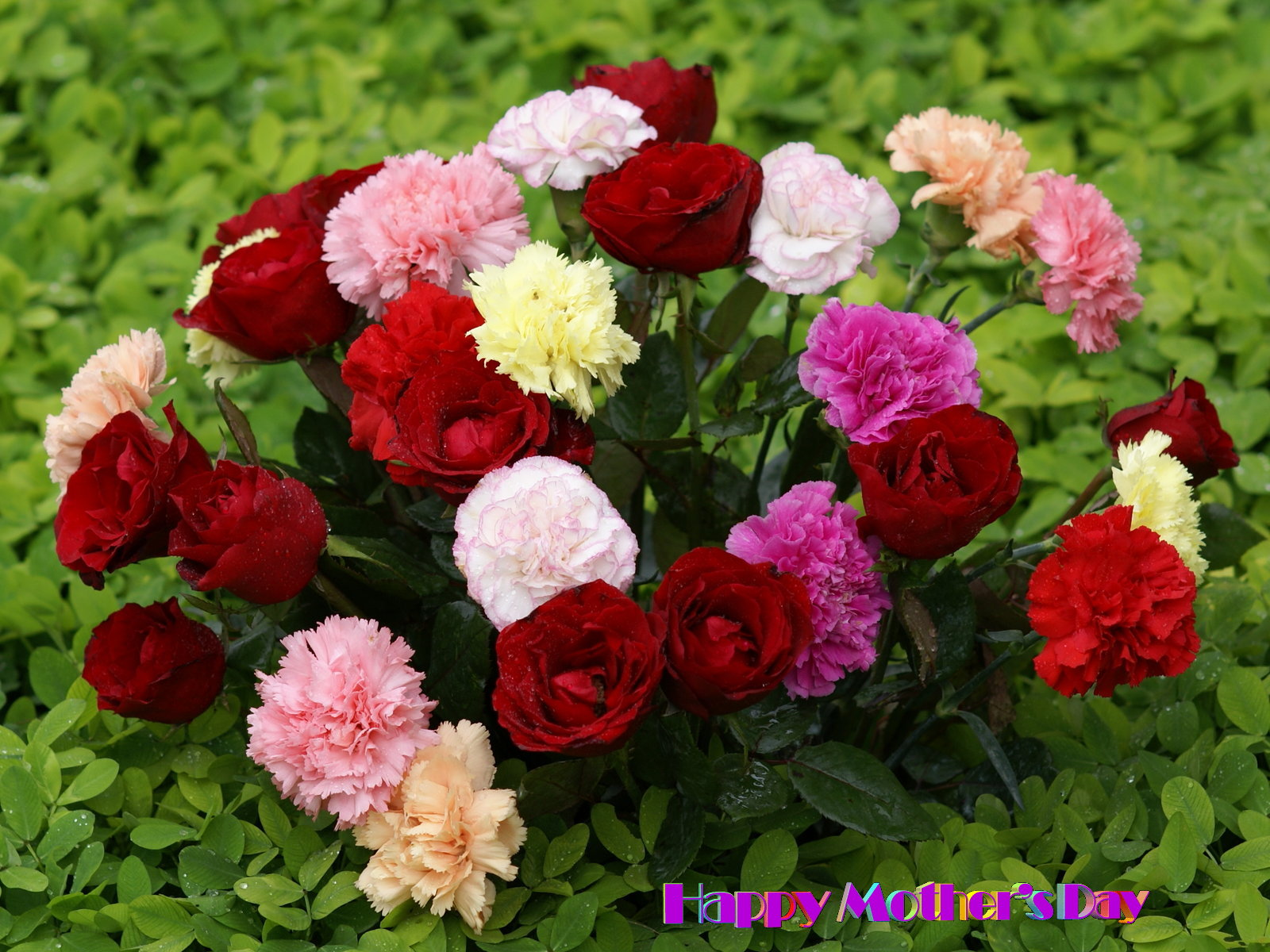 Funny Pictures Gallery: Beautiful flower bouquet, pretty ...