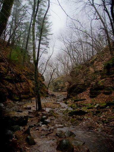 Parfrey's Glen - Merrimack Wisconsin