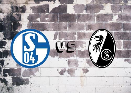 Schalke 04 vs Freiburg  Resumen