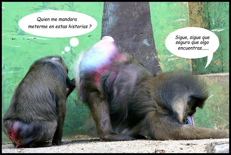 Monos Chistosos Images - Reverse Search