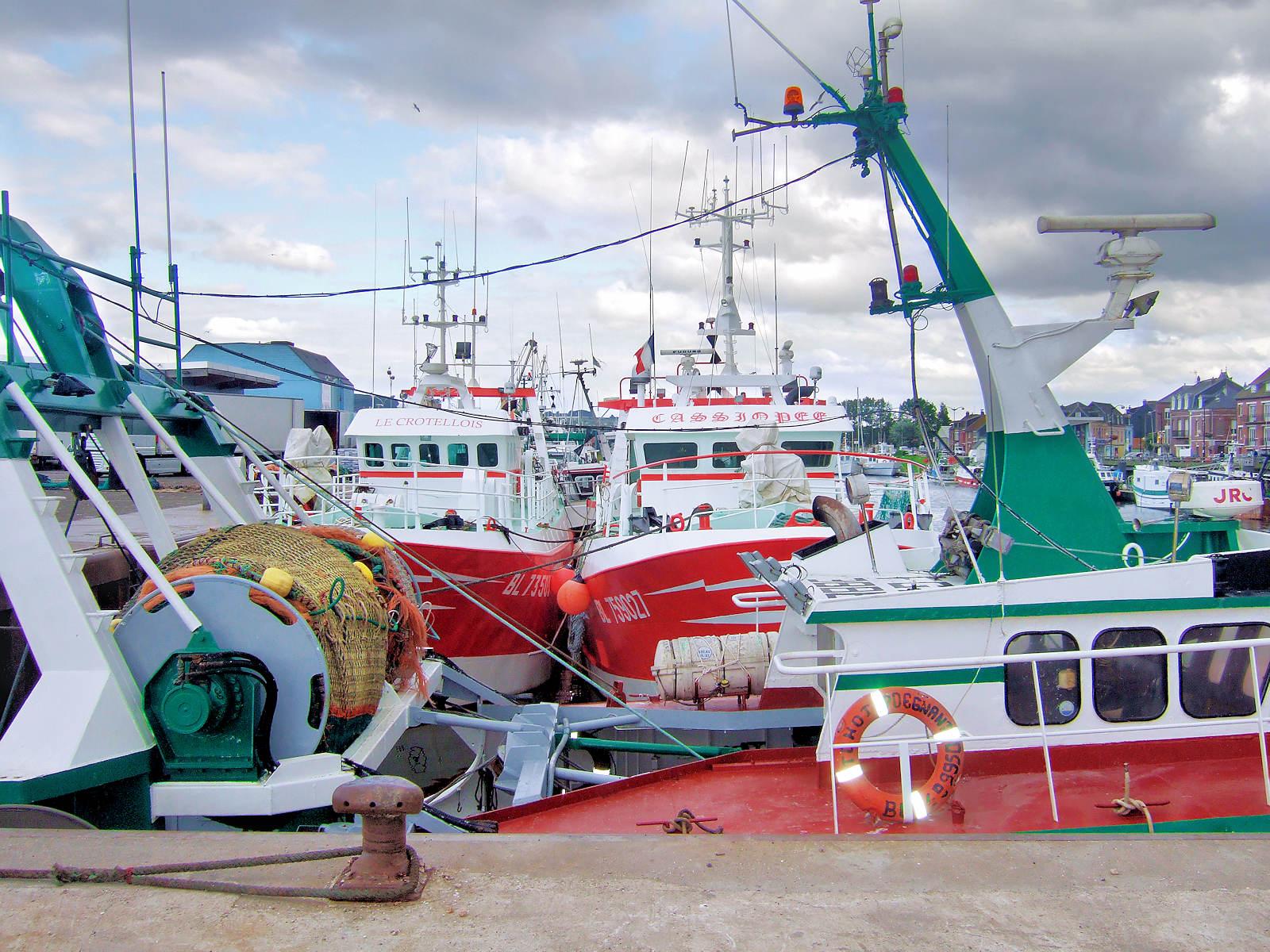 Le Tréport - Chalutiers du port de pêche, 2012