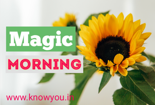 Five Things to do every Morning, Making Magic Morning, Top Best Tips to do every Morning