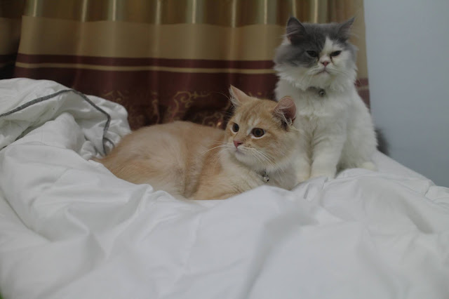 Teby & Keto