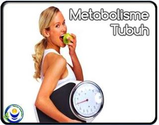 Tips Meningkatkan Metabolisme Tubuh