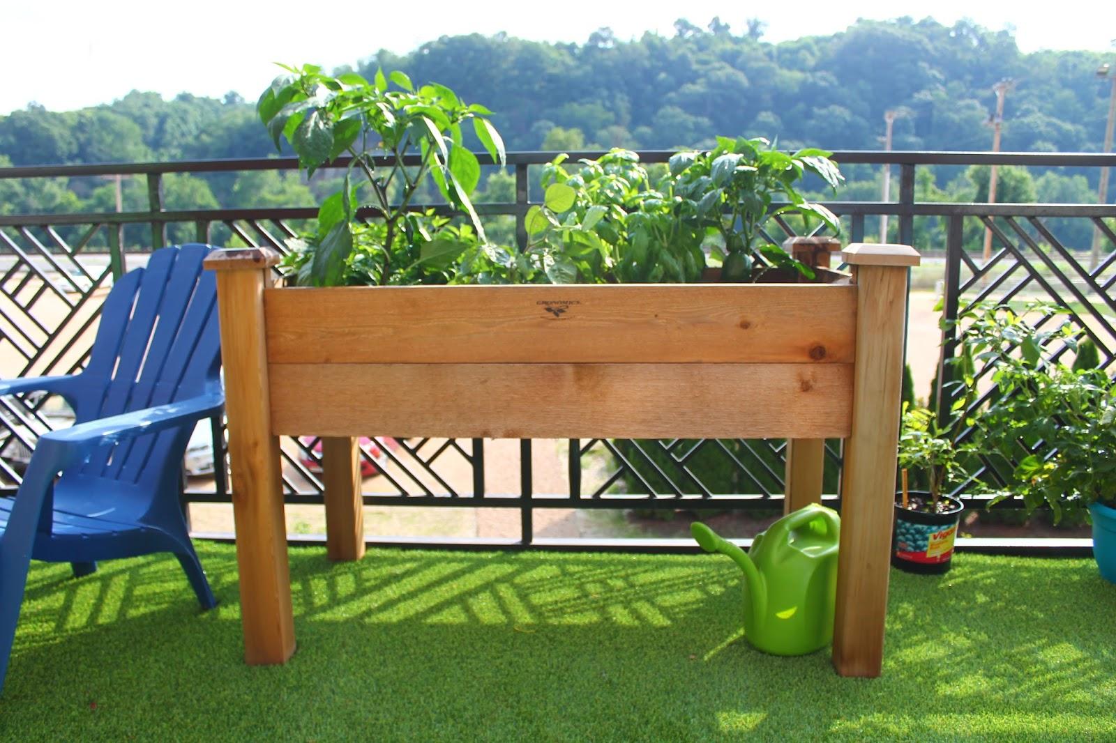 Home Sweet Harlows: Summer Garden Creations: Veggies Edition