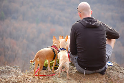 Camping with Your Dogs - Ten Commandments
